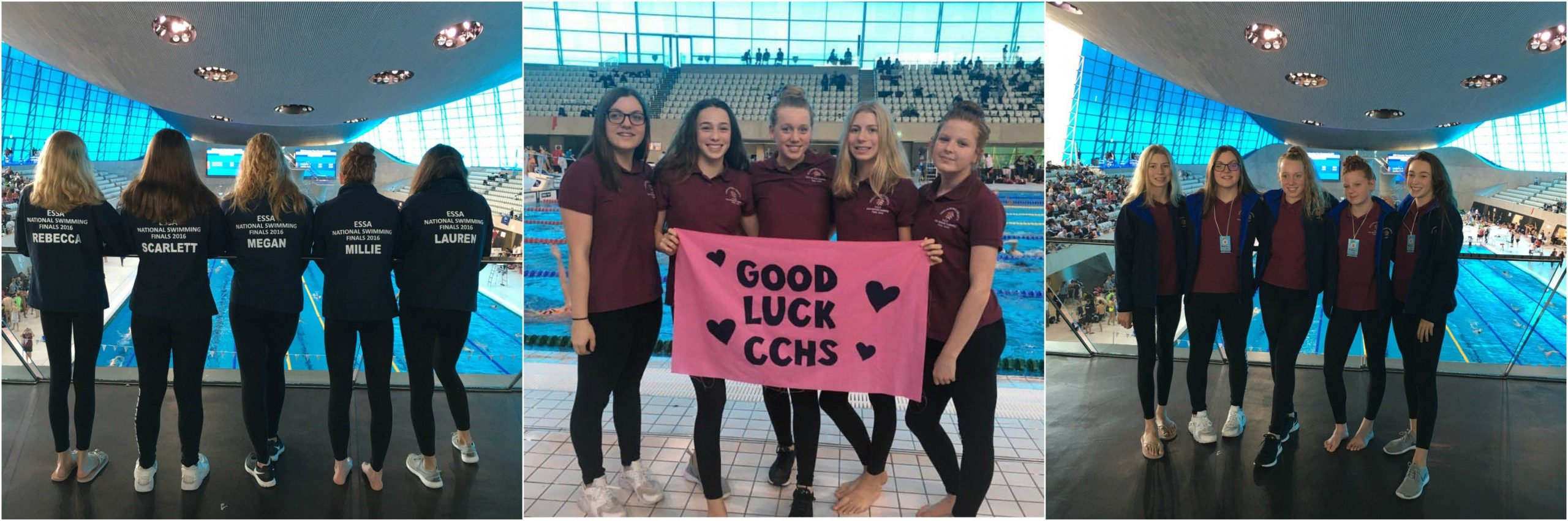 swimming-team-2016